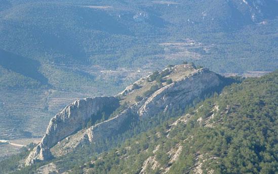 Foto SL-CV-25.6 Parque de Batoi - Castellar